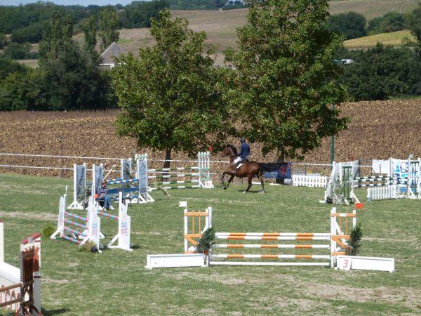 Parcours saut d'obstacles