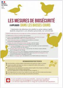 Information Influenza Aviaire, mesures à appliquer dans les basses cours